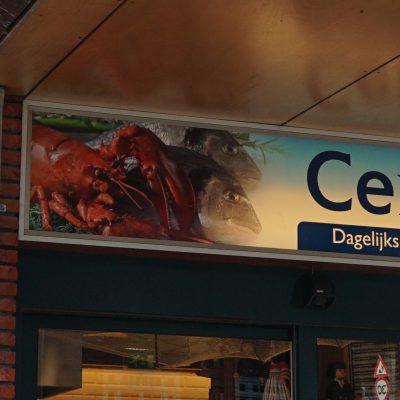 Centrale Vishandel
